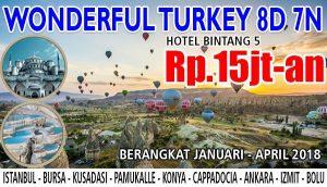 AMAZING-TURKEY