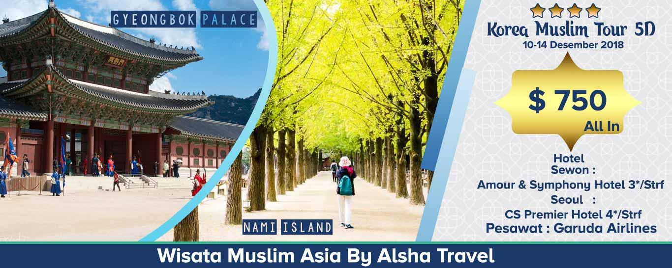 paket wisata tour korea murah - alsha tour